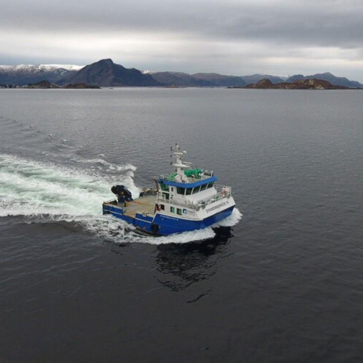 DS 10 Frøy båt