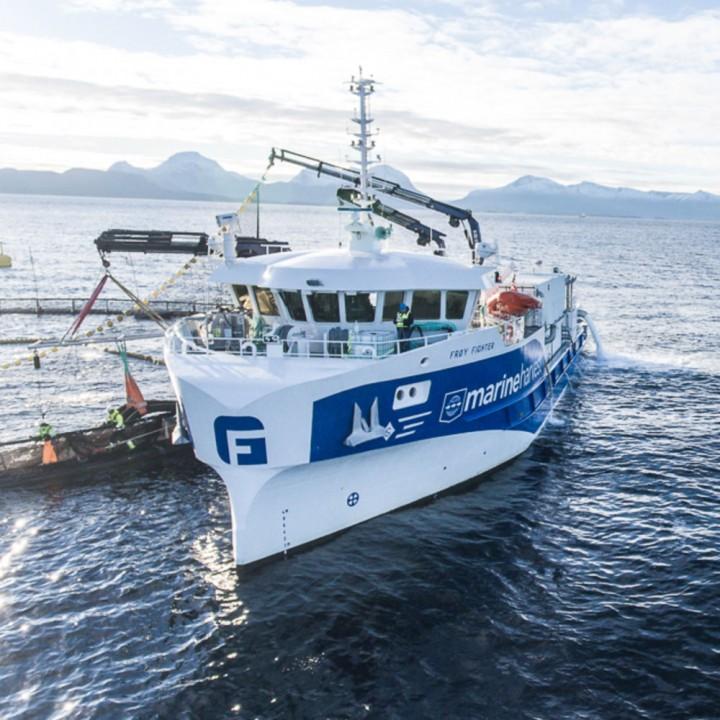 Frøy Fighter båt
