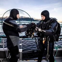 Dykkertjenester Frøy Vest