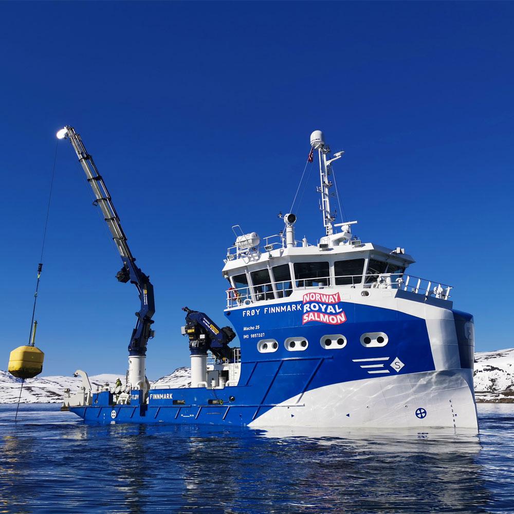 Frøy Finnmark båt